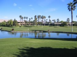 TWO BEDROOM CONDO ON DESERT PRINCESS DR W/GOLF CART