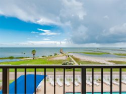 Laguna Reef 1 Bedroom #307 - Wild Thing