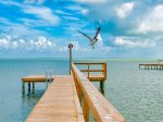Great fishing and views from 100 ft lighted fishing pier