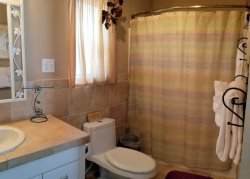 Master bathroom with a tub\/shower combo.  Ceilings also vaulted in the bathroom