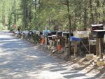 The Hundred Mailboxes on the way to Ponderosa Cabin