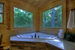 Stargazer - Jetted Tub in Attached Master Bathroom