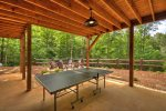 Hidden Escape - Outdoor Ping-Pong Table