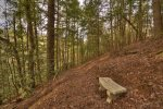 Reel Creek Lodge - Bench Seating Along Trail
