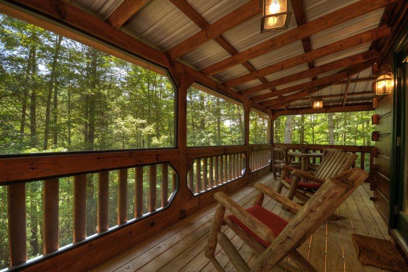 Dawg Paddle In Blue Ridge North Ga Cabin Rental