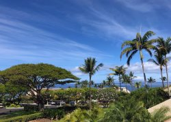 Maui Kamaole I205- September Specials! Oceanview 2BR with High-end Remodel
