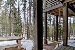 Gray Goose Lodge views of forest.