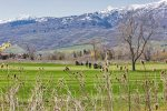 Utah Lodging / MH 409 / Golf Course
