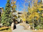 Outdoor Grill - Chateaux DuMont 3 Bedroom Ski-In Condo in Keystone CO