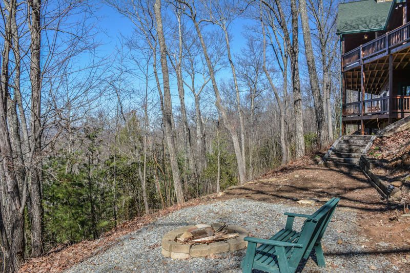 Another Day In Bearadise | Located in Blue Ridge | North GA