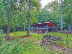 TRANQUILIDAD: 3BR/2BA Cabin! Sleeps 7, Wifi, Hot Tub, Bumper Pool Table, Satellite TV, Fire Pit, Pet Friendly, Motorcycle Friendly, Large Flat Yard, Starting at $99 a night!