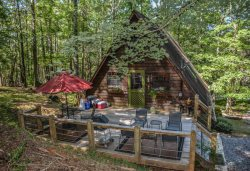 AT A SNAIL'S PACE - Adorable 2 Br/2Ba Cabin In Wooded Setting With Satellite TV, WIFI, Fire Pit, Pet Friendly,  Sleeps 6, Starting At $79/night!