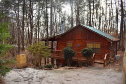 CHEERY DOG CABIN - Starting At $99/night!