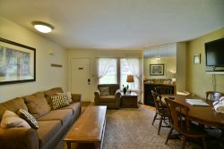 Great 1 bedroom Condo for 2 to 4 people