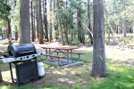 Mammoth Lakes Condo Rental Sunshine Village Wooded BBQ Area Next to the Golf Course