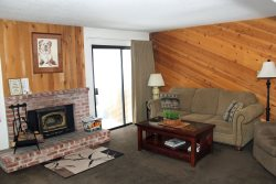 Wildflower Mammoth Condo #59: 1 Bedroom & 1 Bath: WIFI Internet Access, Central to Town & Walk to Mammoth Ski Area Shuttle Stop