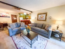 Chamonix D#77: Mammoth Condo Rental Near Canyon Lodge: WIFI Internet Access: Walk To The Lifts