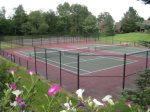 Several tennis courts for friendly matches