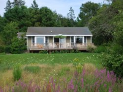 TURKEY COVE COTTAGE - Town of St George