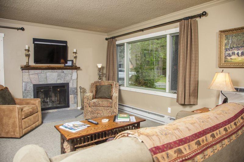 Engel & Volkers Lake Placid Condominium vacation rental