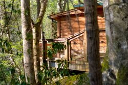 Treehouse on the Hooch -  Newly remodeled riverfront cabin minutes away from Alpine Helen