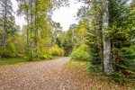 The driveway you will come down to start your vacation at Birch Hollow.