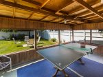 Ping Pong in the Screened Porch