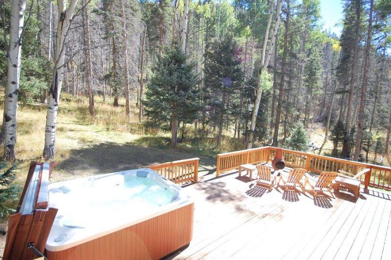 Aspen Mountain Lodge Living Room