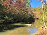 The sun kissed waters of the Cartecay River