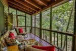 Screened in porch overlooking the Cartecay River