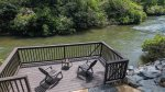 Fire pit area overlooking the Cartecay River