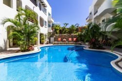 Tropical 1BD Condo - Best Location in Playa!