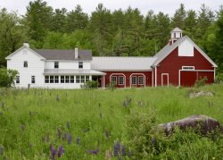 Modernized New England Farmhouse