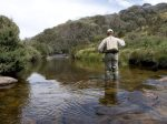Try fly fishing. Just ask us