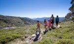 Family hiking to the high country. Ask us where