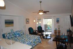 Spectacular Oceanside 1-Bedroom Efficiency