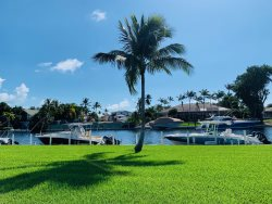 Angelfish Cay 28 A