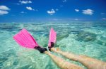 Salt Life!  208 Mariners Club Key Largo