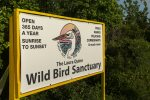 Wild Bird Rehabilitation