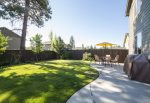 Fenced backyard, barbeque, seated dining for four and extra chairs, pet friendly dog only