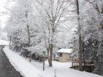 North Westridge 40 - Ski in/ Ski out!! on Cupp Run