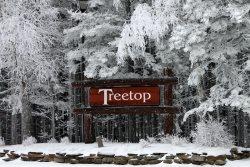 Tree Top #8, Bear Tracks, 2 Bedroom, 1.5 Bath Townhouse