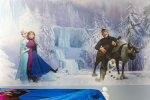 The kids will love their frozen mural in their room