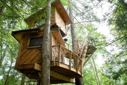*Newly Renovated!* The Observatory Treehouse