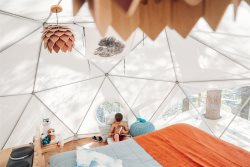**Now Pre-booking!**  Cloud Dome Treehouse