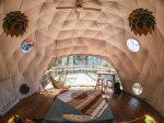 **Newest Treehouse Villiage!** Puma Dome Treehouse