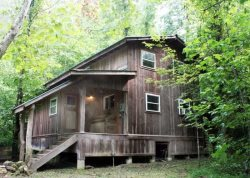 Cane Creek ~ Private Cabin on a 110 Acre Nature Preserve