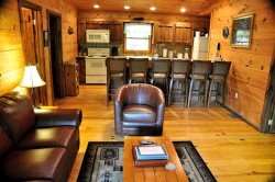 Mountain Lure - Secluded Real Log Cabin with Hot Tub, View, and Wi-Fi - A Mile and a Half from Fontana Lake