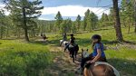 Horseback riding with beautiful views