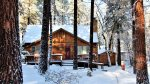 Winter Bliss at Forest Chalet